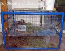 Pvc marco muy fresco para jaulas de los conejos de interior