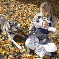 Curamos los celos del perro del nuevo bebé: un estudio de caso